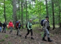 walking-on-foot-by-bialowieza-forests