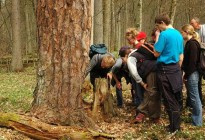 Lectures for students in Bialowieza Primaeval Forest