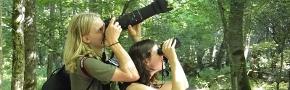 Bialowieza - Individual tourist trips