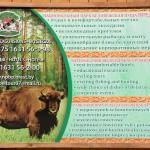 Belarusian BPNP offer